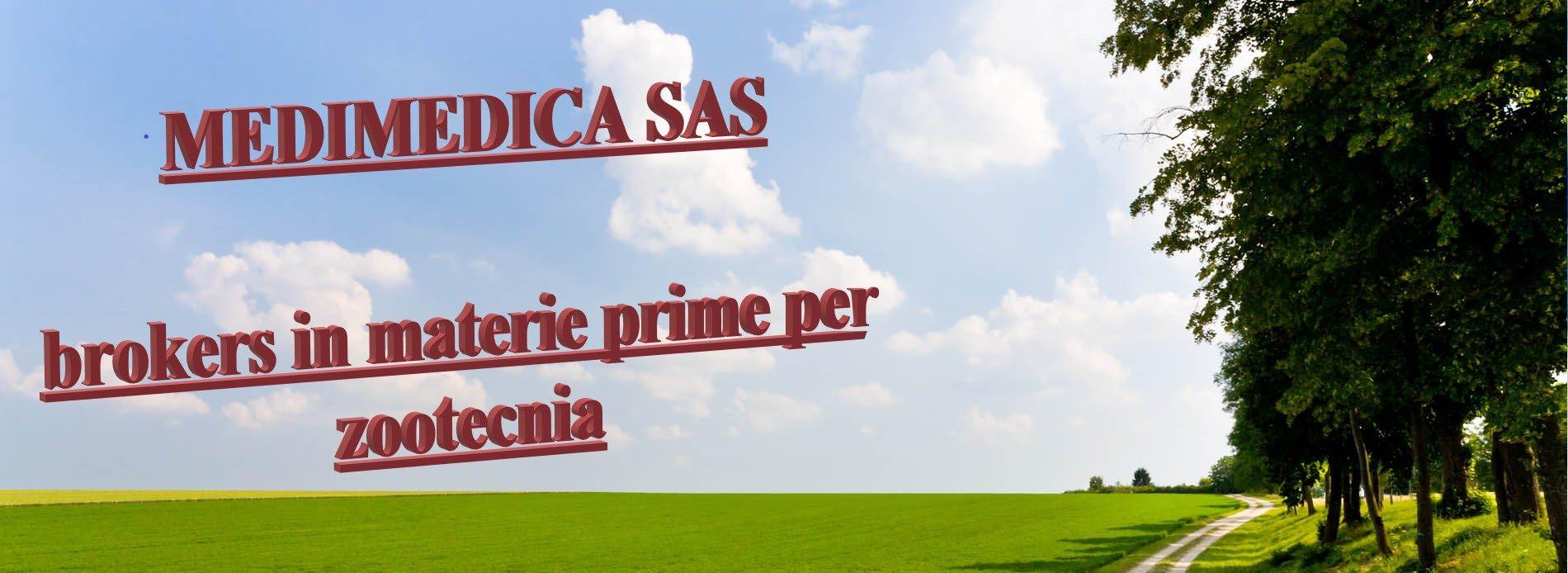 MEDIMEDICA SAS